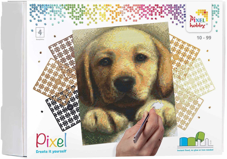 Pixel P090045 Mozaika opakowanie na prezent pies Obraz pikseli około 20,3 x 25,4 cm rozmiar do tworzenia dla dzieci i dorosłych, kolorowy