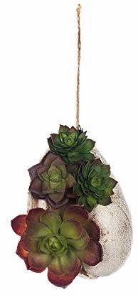 EUROCINSA Art.74019C27 Kaktus, zielony, pudełko z 3 sztukami, tworzywo sztuczne, żywica poliestrowa, granat, 17 x 11 x 11 cm