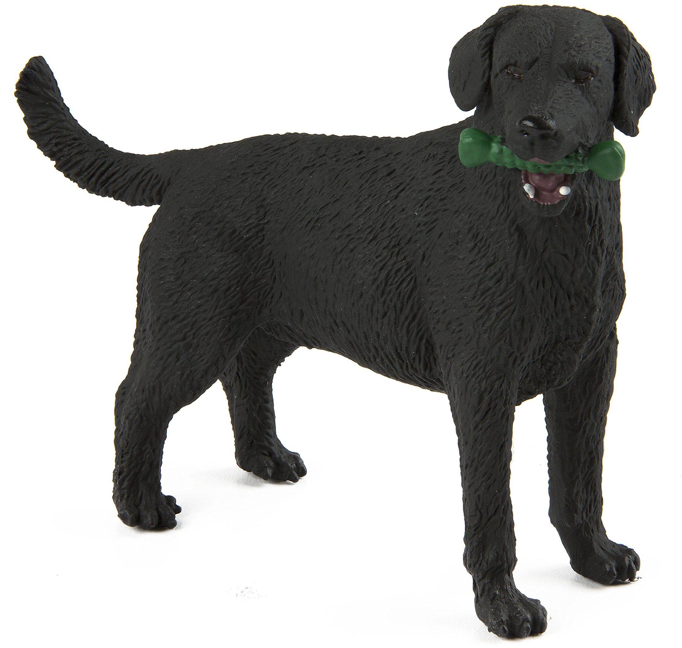 Safari S253429 Najlepsze w pokazie psy czarny labrador miniatura plastikowa miniatura