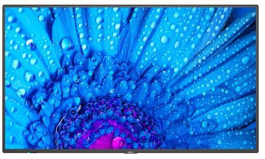 NEC M651 POLSKA DYSTRYBUCJA I GWARANCJA TELEFON 608 015 385