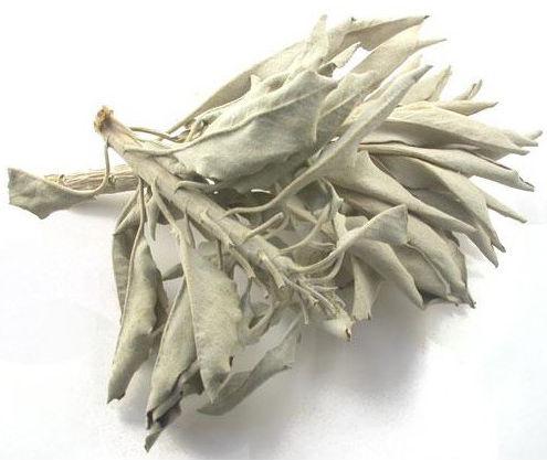 Biała szałwia (susz) 25 g