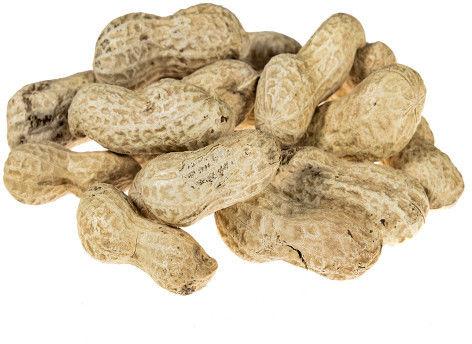 Orzechy ziemne SUROWE nie prażone (fistaszki) 5 kg