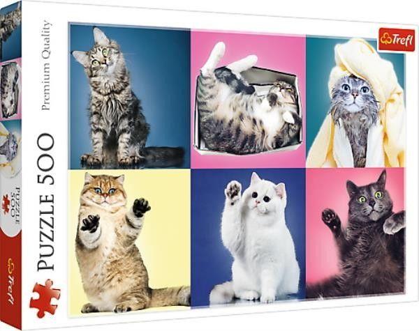 Puzzle TREFL 500 - Kociaki, Kittens