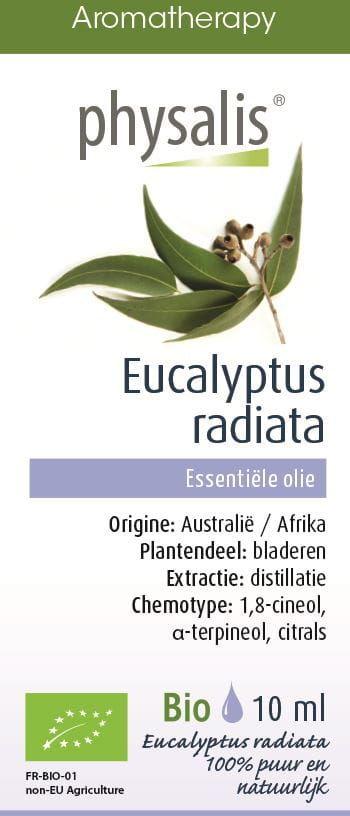 Olejek eteryczny eukaliptus australijski (eucalyptus radiata) bio 10 ml - physalis