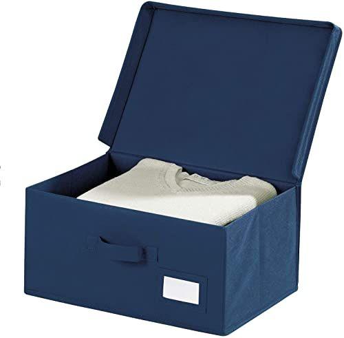 Wenko 4260060100 Pudełko do Przechowywania Przedmiotów, Polipropylen, Niebieski, 33 x 44 x 19 cm