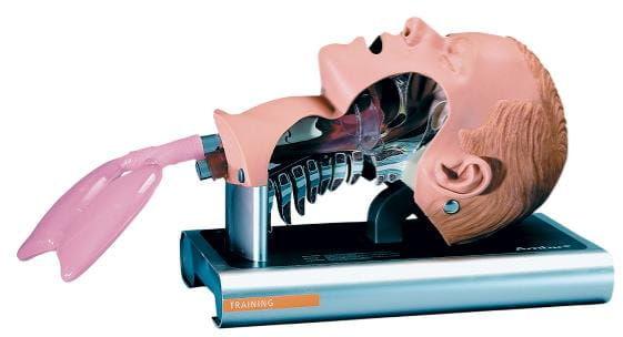 Fantom - głowa do intubacji przekrój Ambu Airway Management Trainer