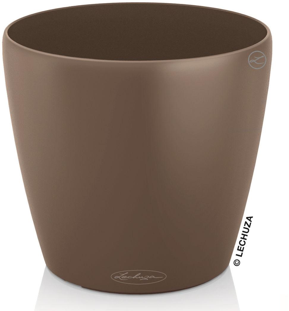 CLASSICO Color 43/40 muszkatołowy brąz
