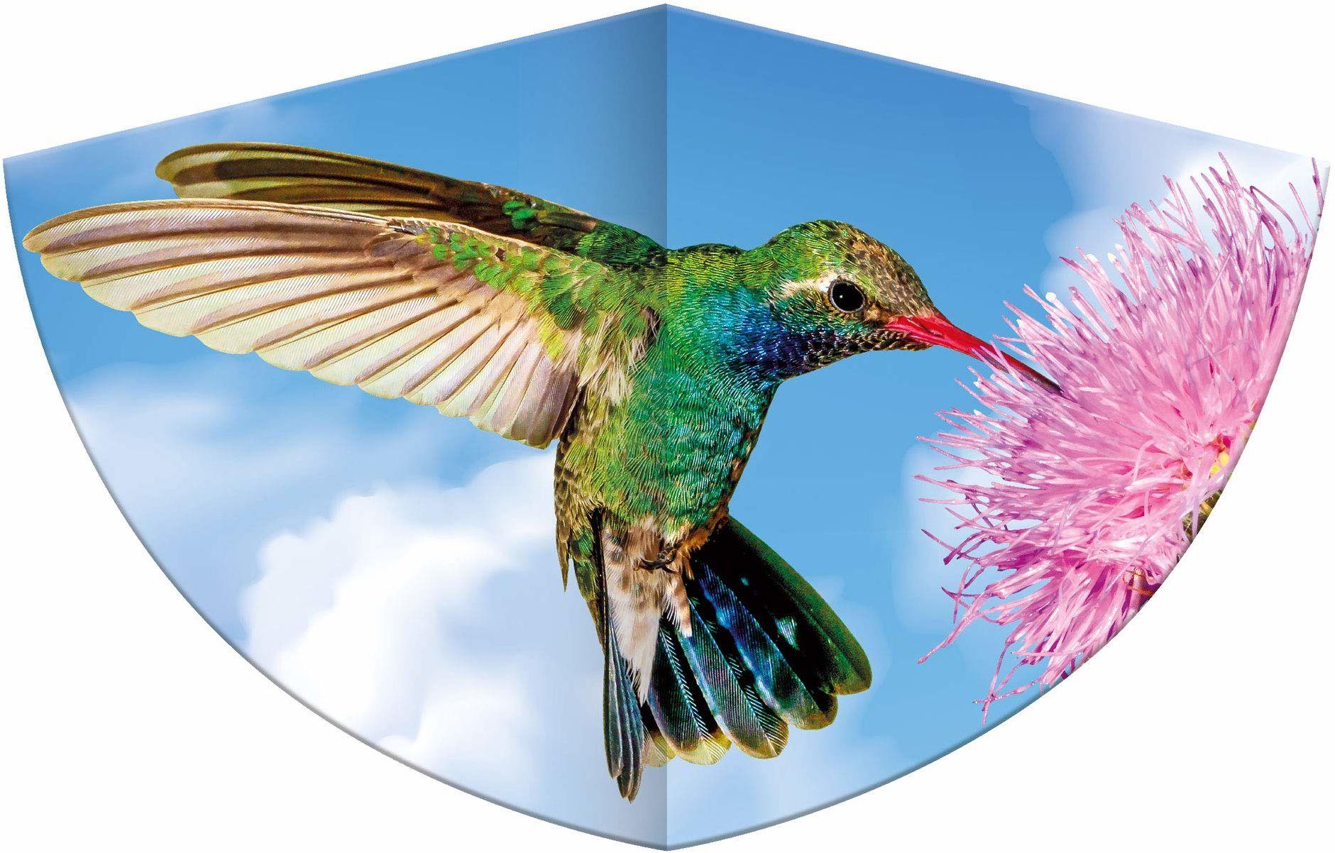 Dziecięcy smok z motywem kolibri, jednorożec wykonany z wytrzymałej folii PE z regulowaną wagą smoka, dla dzieci od 4 lat z uchwytem i sznurkiem, rozmiar ok. 75 x 48 cm