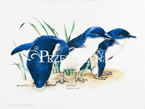 DUŻA PODKŁADKA POLIPROPYLENOWA NA STÓŁ - Ptaki - Pingwiny