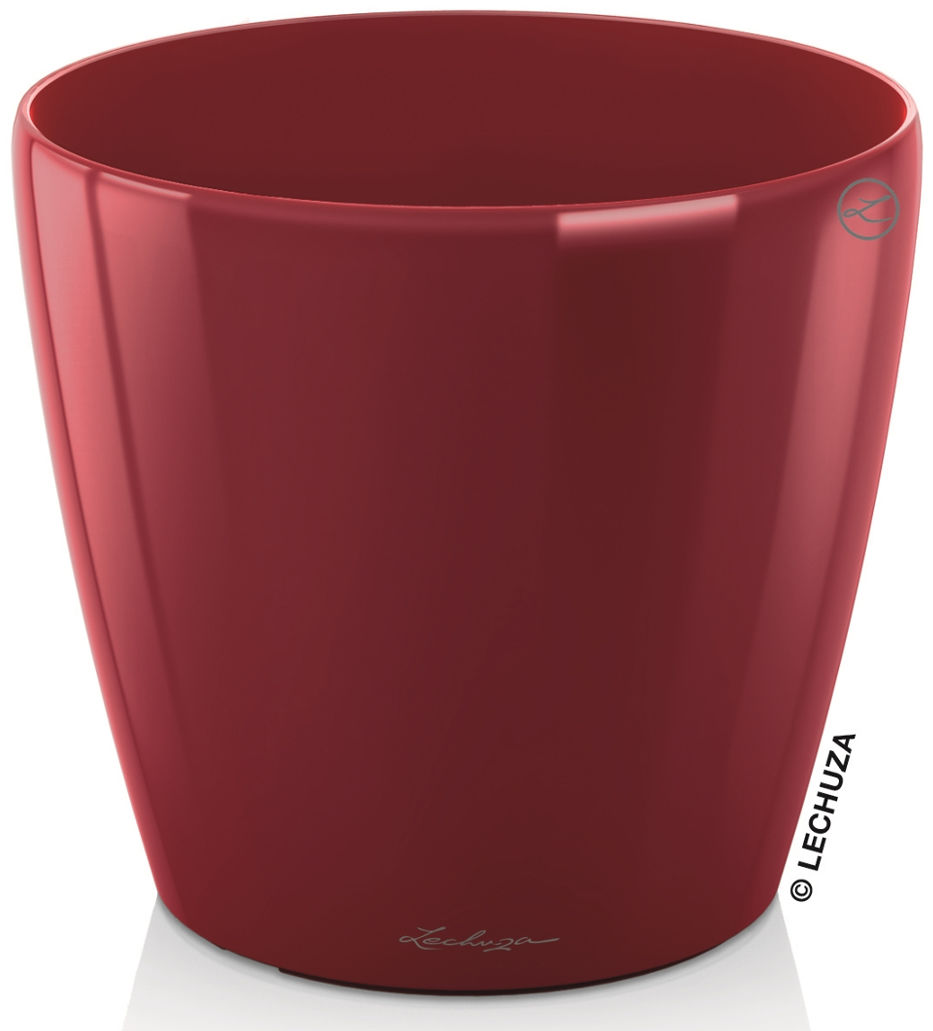 CLASSICO LS 35/33 czerwony scarlet połysk
