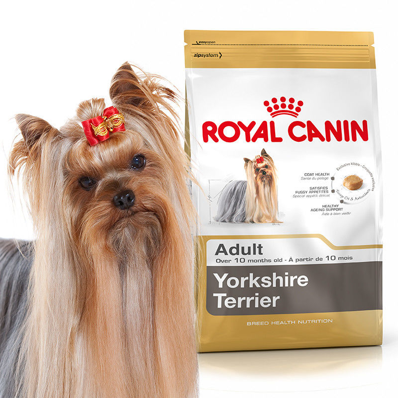 ROYAL CANIN Yorkshire Terrier Adult 3kg karma sucha dla psów dorosłych rasy Yorkshire Terrier