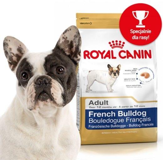 ROYAL CANIN French Bulldog Puppy 3kg karma sucha dla szczeniąt do 12 miesiąca, rasy bulldog francuski