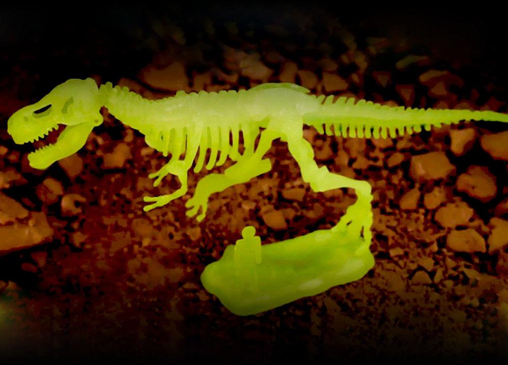 Zestaw dla małych archeologów - Tyranosaurus Rex
