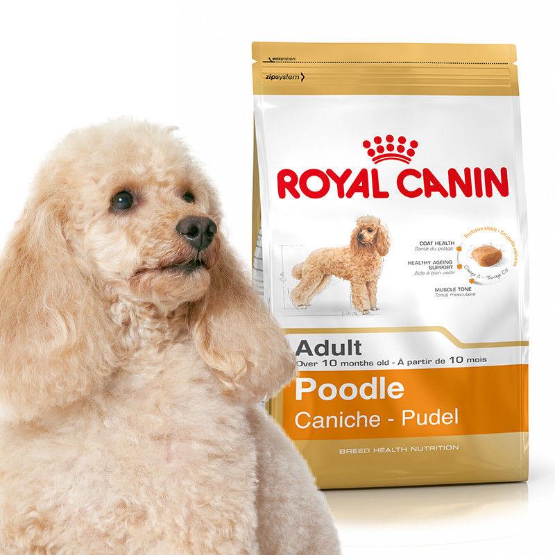 ROYAL CANIN Pudel Poodle Adult 1,5kg