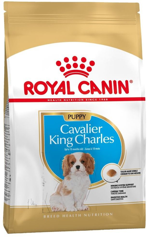 ROYAL CANIN Cavalier King Charles Spaniel Adult 1,5kg karma sucha dla psów dorosłych rasy cavalier king charles spaniel
