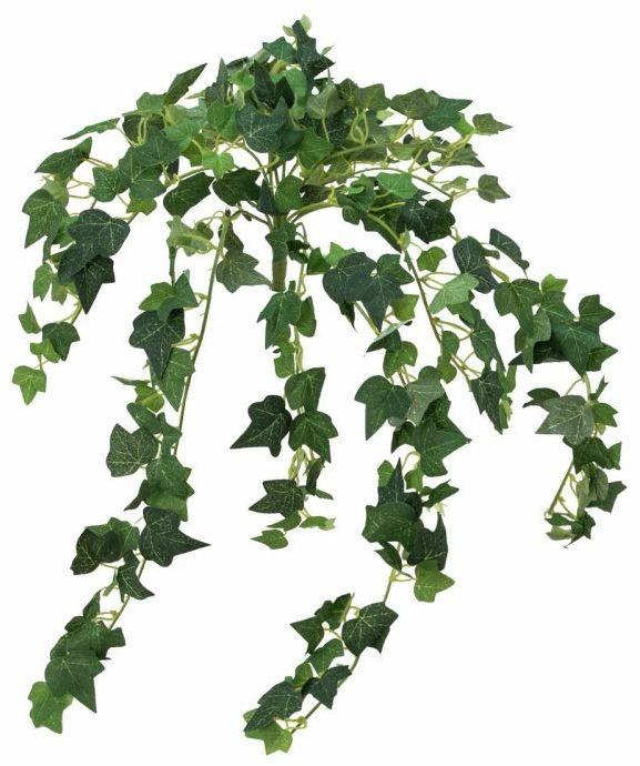 Europalms sztuczna roślina bluszcz, pnącze Ivy, 50 cm, zielona