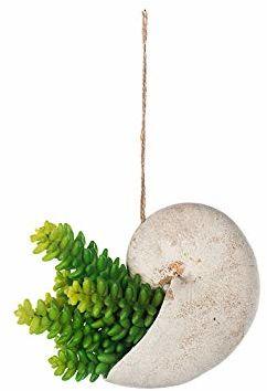 EUROCINSA Art.74020C50 szafka wisząca Kaktus, zielona, pudełko z 6 sztuk, tworzywo sztuczne, żywica poliestrowa, 16 x 8 x 18 cm