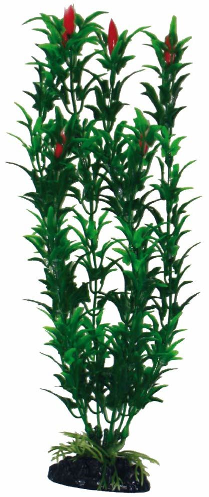 WAVE Egeria Densa roślina klasyczna, XL