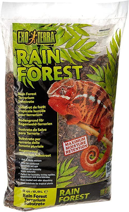 peat; tropikalne; mech; terrarium; grunt; podłoże
