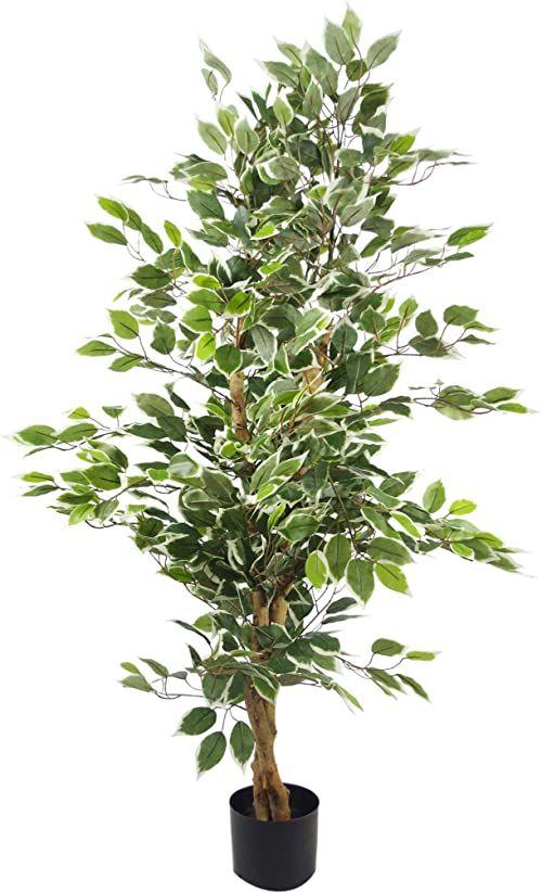 Liść, 130 cm, zielone drzewko fikucyjne, biała krawędź, bukiet