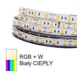 Profesjonalna taśma LED RGBW 19,2W odcinek 1m