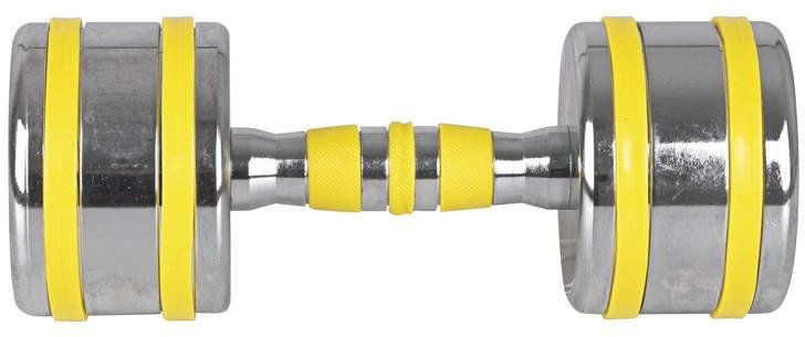 Hantla chromowana Yellsteel Insportline 10 kg