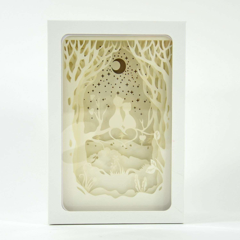 Kögler 32624  podświetlana, 3D pudełko z motywem kota, biała rama, ok. 21,5 x 14,5 x 7 cm, trójwymiarowy efekt dzięki wielu filigranowym warstwom papieru, nastrojowy element przyciągający wzrok