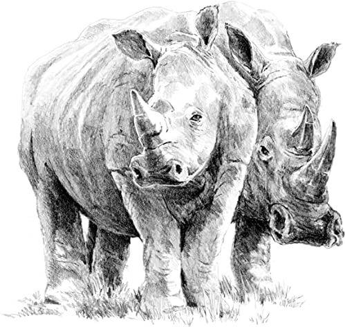 Royal & Langnickel Nosorożec para A4 zestaw do szkicowania łatwych projektów artystycznych