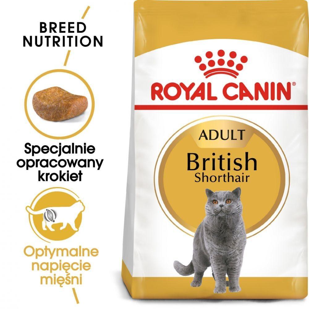 ROYAL CANIN British Shorthair 2kg karma sucha dla kotów dorosłych rasy brytyjski krótkowłosy
