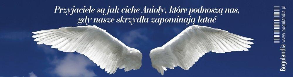 Zakładka 12 do książki - Przyjaciele są jak ciche Anioły