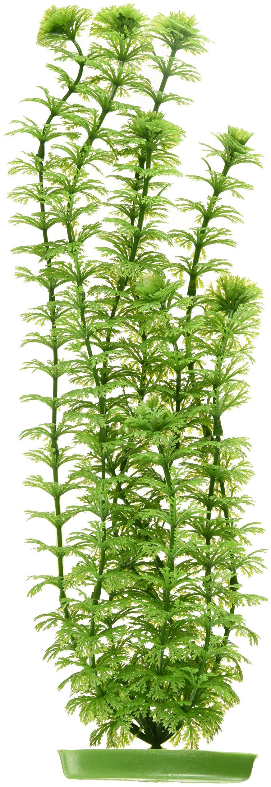 Marina Plastikowa roślina z ambulią z tworzywa sztucznego, 37,5 cm