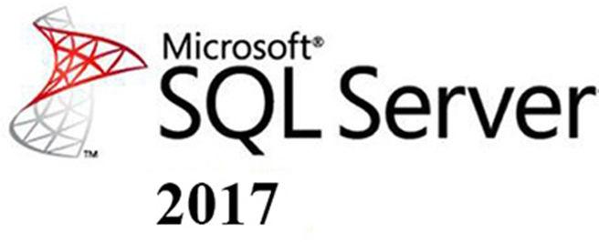 Microsoft SQL Server 2017 Standard + 100 User