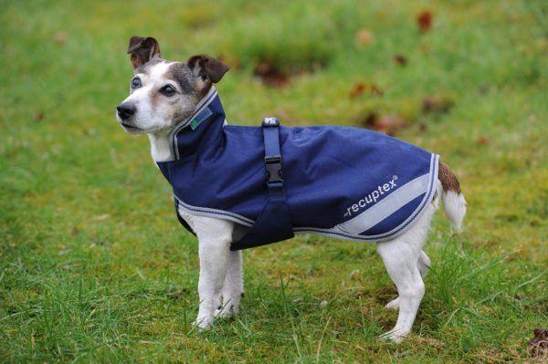 Derka dla psa Recuptex Therapy - BUCAS - navy/orange