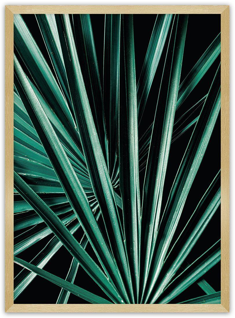 Plakat Dark Palm Tree