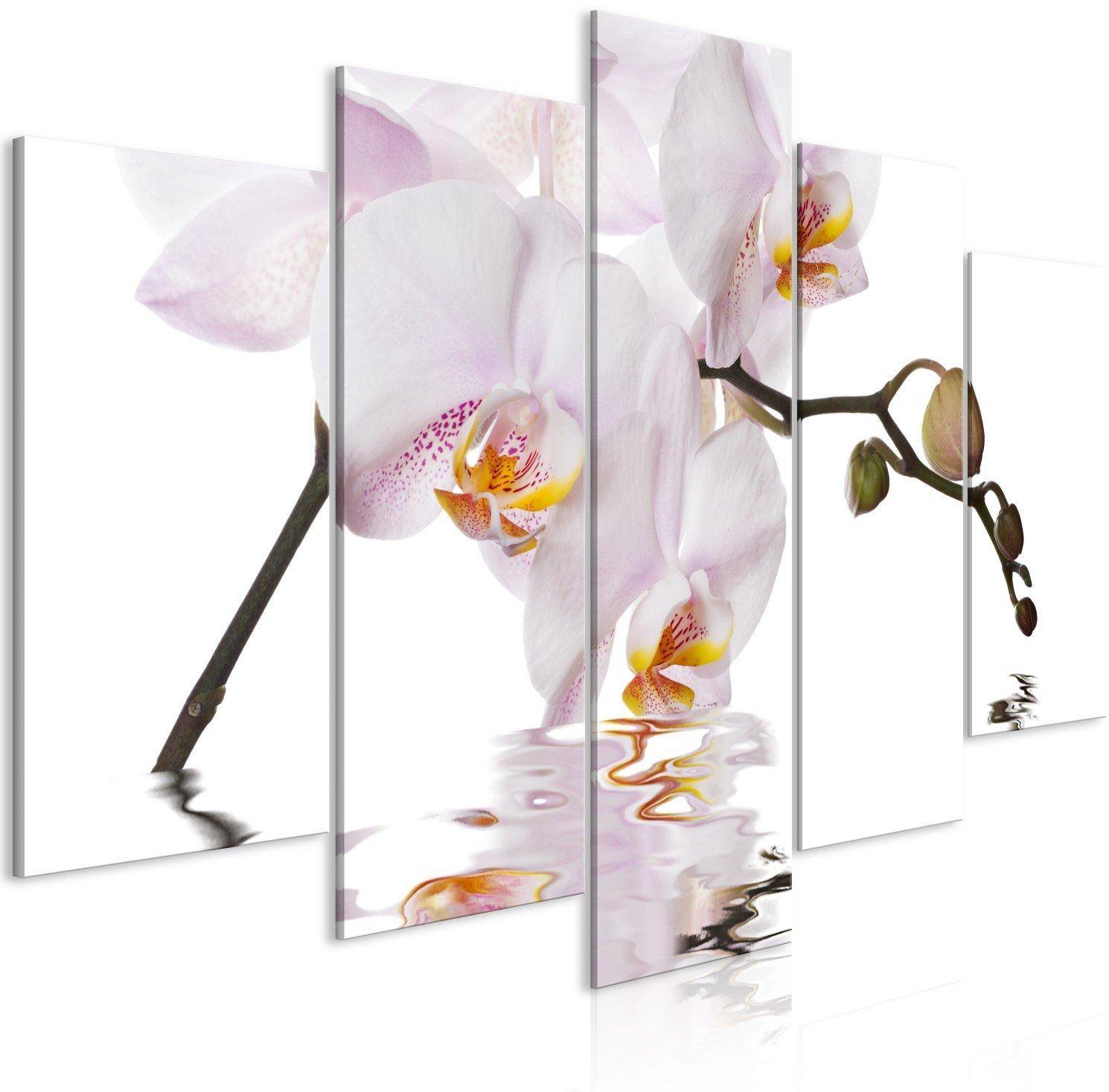 Obraz - zachwycająca orchidea (5-częściowy) szeroki