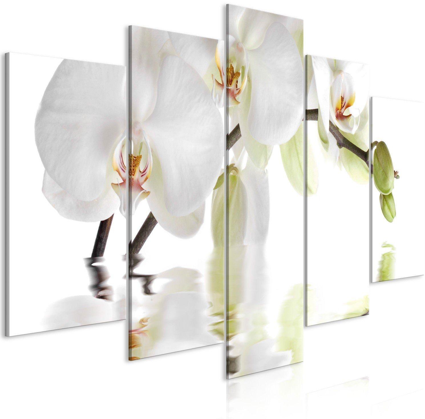 Obraz - wspaniała orchidea (5-częściowy) szeroki