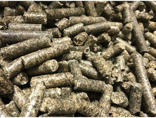 Wysłodki buraczane niemelasowane Nuba Beet 25kg - Nuba Equi