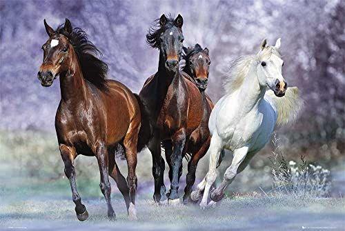 Empire 499349 zdjęcie na drewnianym panelu MDF 90 x 60 cm biegnące konie od Boba Langrish