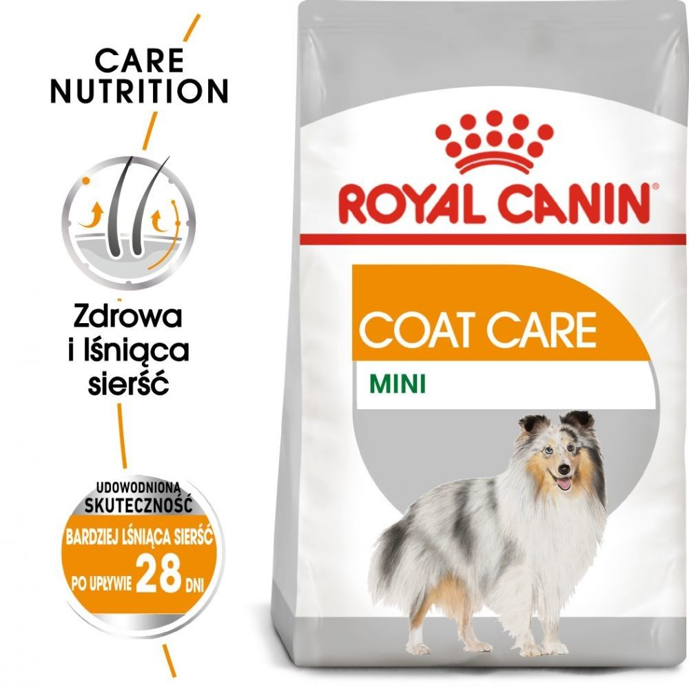 ROYAL CANIN CCN Mini Coat Care 3kg karma sucha dla psów dorosłych, ras małych o matowej sierści
