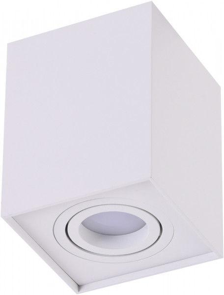 Oprawa sufitowa ELOY 1 SMART (WHITE) AZ3777 - Azzardo