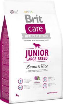Brit Care Lamb & Rice Jagnięcina Junior Large Breed 3 kg