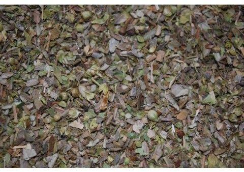 Oregano typ 2 % (ilość olejków eterycznych) 0.2 kg