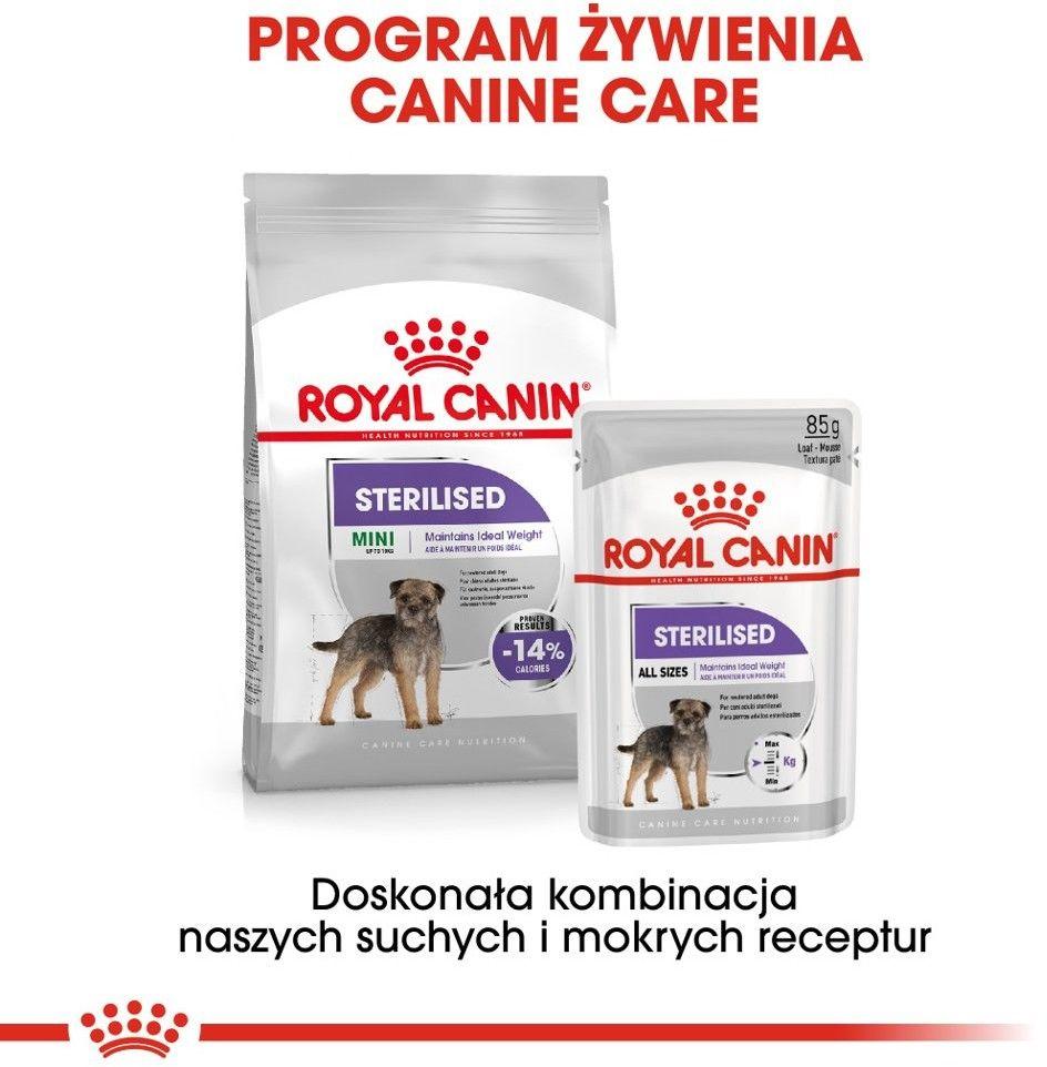 ROYAL CANIN CCN Sterilised 12x85g karma mokra - pasztet dla psów dorosłych, sterylizowanych