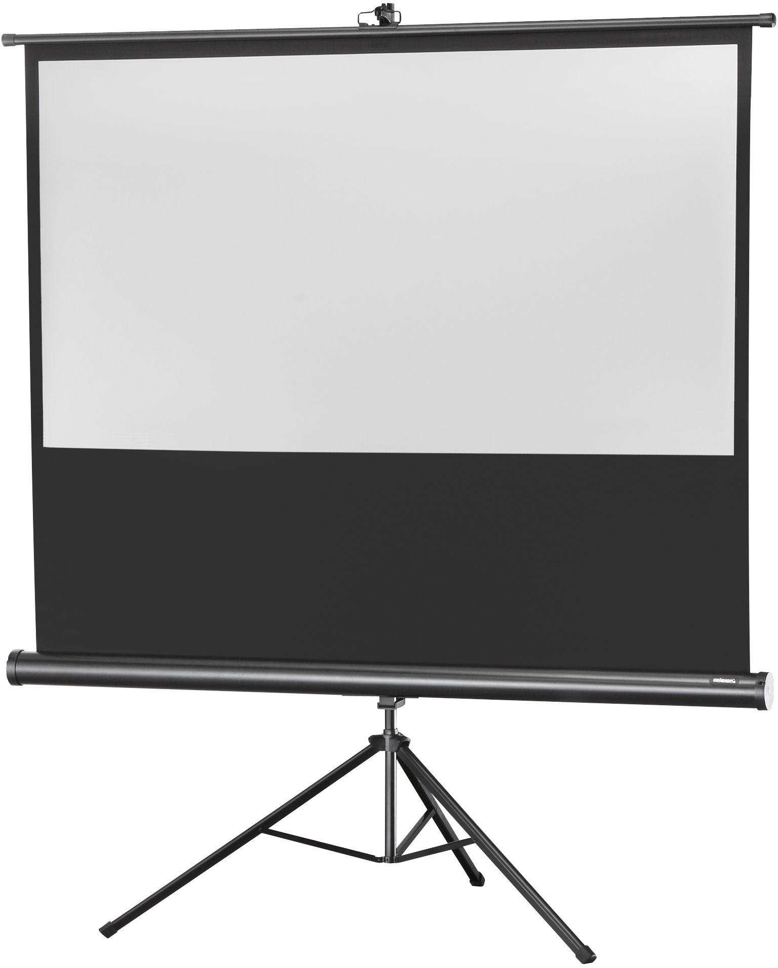 celexon Economy 244 x 138 cm ekran projekcyjny na trójnogu