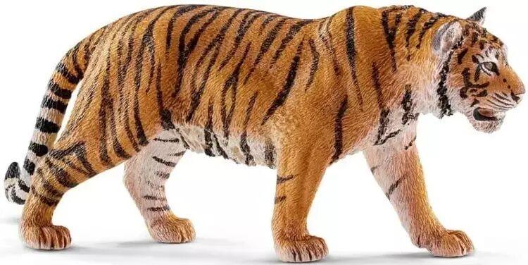 Tygrys - SCHLEICH