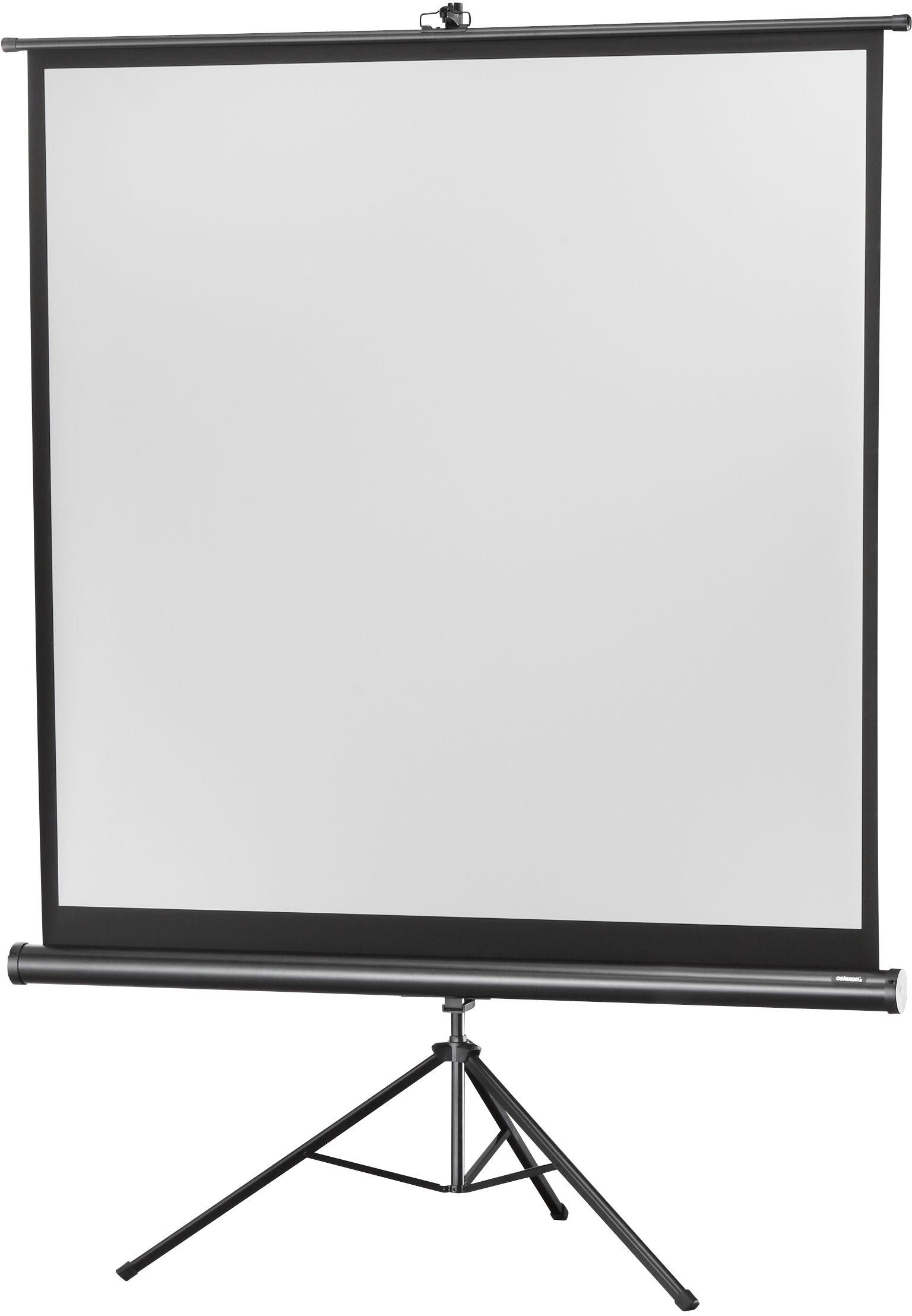 celexon Economy 244 x 244 cm ekran projekcyjny na trójnogu 1:1 (135) - Biala edycja