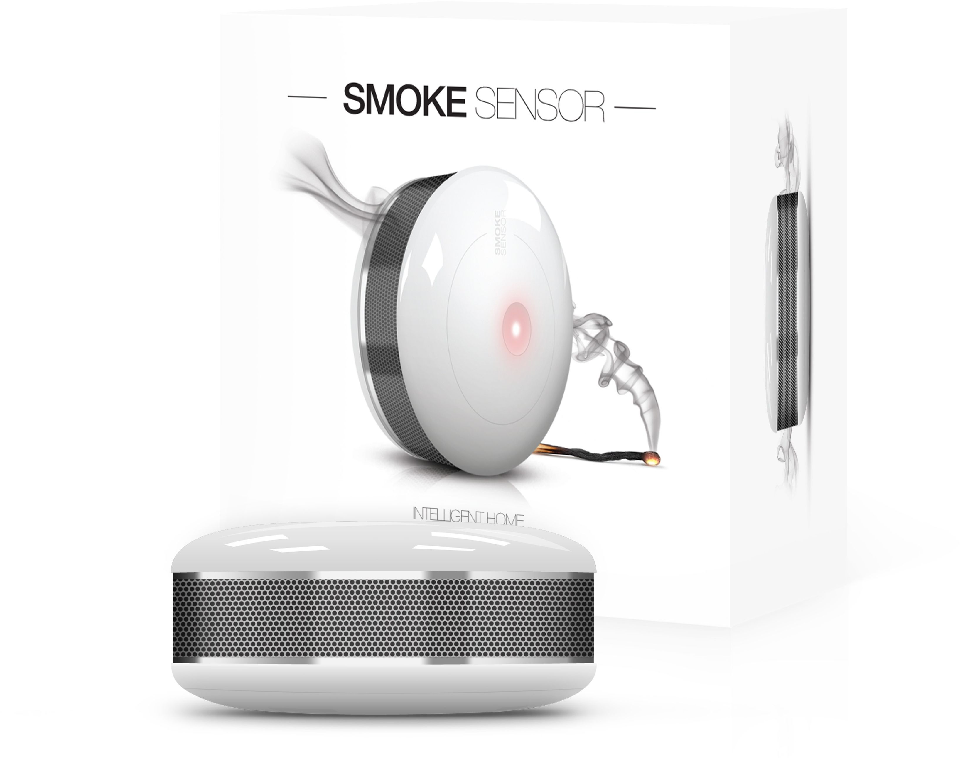 Smoke Sensor FGSS-001