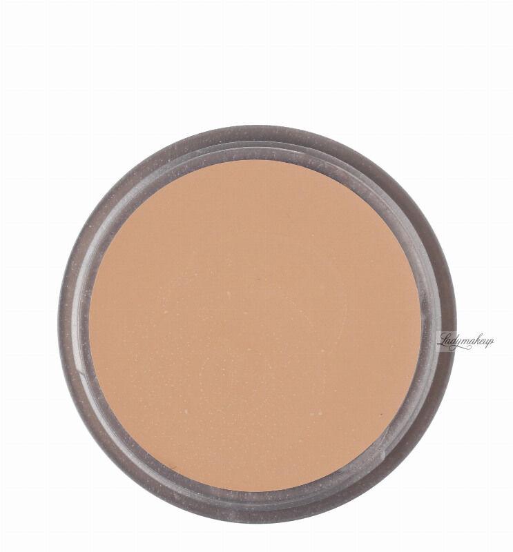 KRYOLAN - Ultra Foundation - Podkład w kremie dobrze kryjący - ART. 9002 - SHIBU