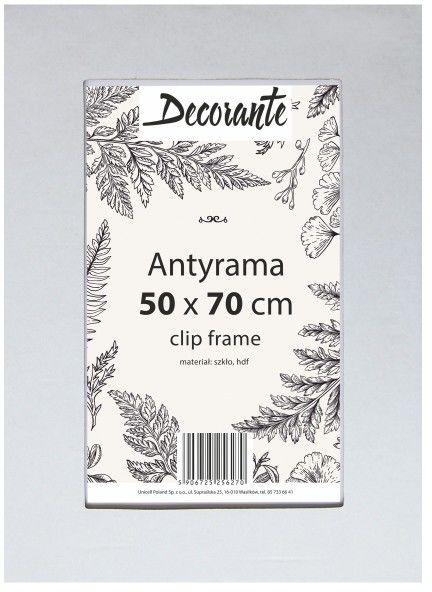Antyrama szklana 50 x 70 cm