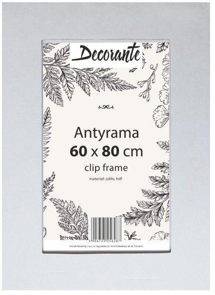 Antyrama szklana 60 x 80 cm